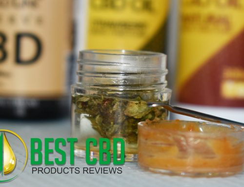 Reviews of the Best CBD Products on the market.